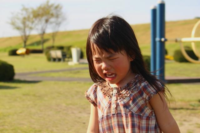 うちの旦那は娘を公園に連れていって、驚かせて転ばせて泣かせているのが許せませません!