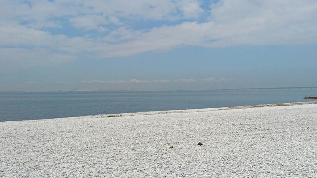 一面白い大理石の玉石を敷き詰めた「マーブルビーチ」は、海岸がキレイで見ているだけで時間があっという間に過ぎます。