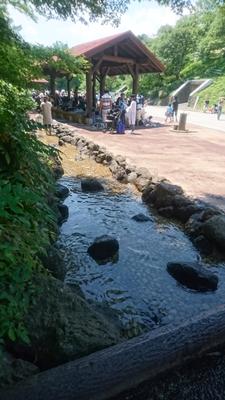 こどもの国で食べるバーベキューは、小さな川の側で食べるお肉は最高です。