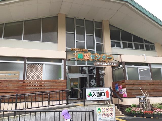 緑化センターは入場無料、駐車場無料で楽しめるので、親子連れでも安心してリーズナブルに利用できます。
