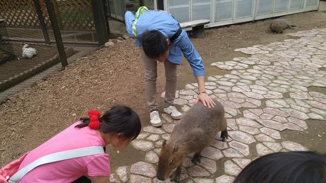 サユリワールドでは動物に触れ合えるので、最初は怖がっていた子供もすぐに楽しんで餌やりできるようになります。