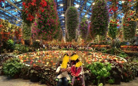 なばなの里ではお花に囲まれて自然と笑顔が溢れます。