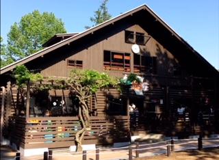 美しが丘公園のログハウスの外観です。めちゃくちゃ面白い施設で、小さい子供も大喜びです。